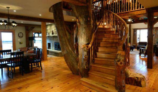 pohon jadi tangga